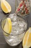 与冰块和切片的矿泉水在玻璃的柠檬 库存照片