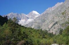 与冰川和森林的美好的山风景在一个晴朗的夏日 免版税库存图片