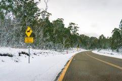 与冰川覆盖的柏油路的冬天风景 库存图片