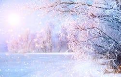 与冰河的美好的冬天风景场面 免版税库存照片