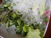 与冰的新鲜蔬菜 免版税库存照片