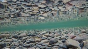 与冰的美好的秋天河底剥落在表面张力的漂浮过去和反射,在水面下 股票录像