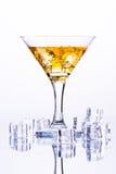 与冰的马蒂尼鸡尾酒玻璃在白色背景的冰块中 库存照片