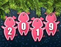 与冷杉云杉和贴纸猪的庆祝墙纸新年快乐的2019年 向量例证
