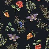 与冷杉分支、莓果、飞蛾、花和蕨的水彩葡萄酒花卉森林无缝的样式 皇族释放例证