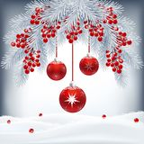 与冷杉分支、莓果和红色球的圣诞卡 图库摄影