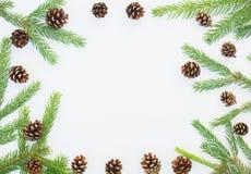与冷杉分支和杉木锥体的冬天土气圆的框架 库存照片