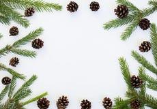 与冷杉分支和杉木锥体的冬天土气圆的框架 库存图片