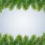 与冷杉分支的圣诞节背景 免版税库存图片