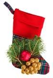 与冷杉分行的圣诞节方格的储存 免版税库存照片