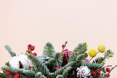 与冷杉和干花的新年束 免版税库存照片