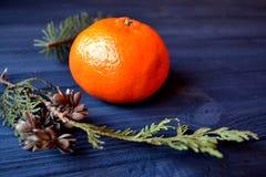 与冷杉木和蜜桔分支的平的位置背景  橙色普通话和冷杉木绿色分支在桌上的 免版税图库摄影