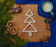 与冷杉木,围巾,干桔子,锥体,饼干,桂香的圣诞节背景 库存照片