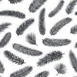 与冷杉杉木常青针叶树枝杈的黑白无缝的样式 库存例证