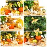 与冷杉枝杈,蜜桔,在沙子,集合的壳的圣诞节概念 免版税库存图片