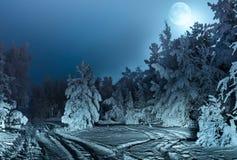 与冷杉森林雪和满月的每夜的风景 库存图片