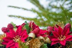 与冷杉的圣诞节背景分支,霍莉、金磁带和一品红花 免版税库存照片