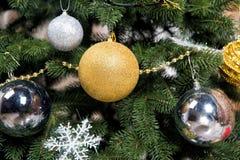与冷杉针的圣诞树在绿色分支 库存图片