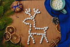 与冷杉,鹿,围巾,干桔子,锥体,饼干,桂香的圣诞节背景 免版税库存图片