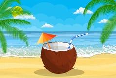 与冷的饮料,酒精鸡尾酒的椰子在手中 库存照片