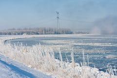 与冻用树冰盖的湖和芦苇的冬天风景 库存照片