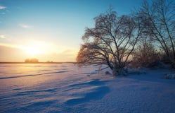 与冻结的湖、树和日落的美好的冬天风景 免版税库存图片