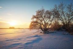 与冻结的湖、树和日落的美好的冬天风景 免版税库存照片