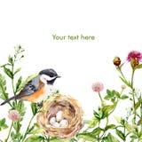 与减速火箭的设计的贺卡:狂放的草本、鸟和巢水彩 图库摄影
