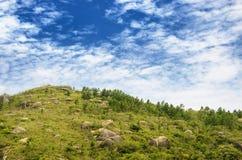 与几个大岩石的山峰在gree中的地面上 免版税库存图片