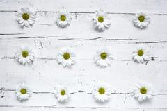 与几朵五颜六色的花的花卉样式 图库摄影