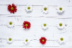 与几朵五颜六色的花的花卉样式 库存照片