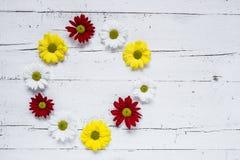 与几朵五颜六色的花的花卉样式 库存图片