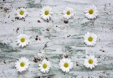 与几朵五颜六色的花的花卉样式 免版税库存照片