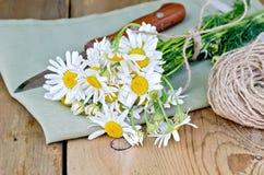 与刀子和餐巾的春黄菊在船上 免版税图库摄影