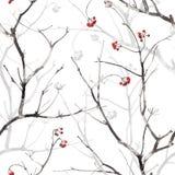 与分支、莓果和阴影的水彩无缝的样式 免版税库存照片