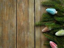 与分支云杉的圣诞节背景 库存图片