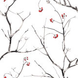 与分支和莓果的水彩无缝的样式 库存照片