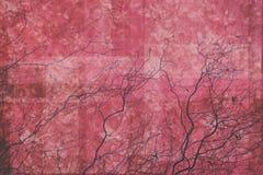 与分支的抽象红色和桃红色背景 免版税库存照片