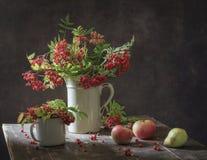 与分支的静物画用在白色葡萄酒水罐的莓果红色花揪 免版税图库摄影