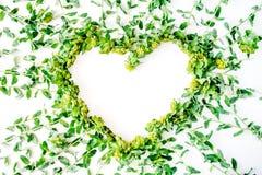 与分支,叶子,在白色背景隔绝的瓣的黄色和绿色花卉花圈框架心脏 免版税图库摄影
