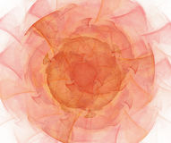 与分数维玫瑰色纹理的白色抽象背景 红色和ora 免版税图库摄影
