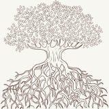 与分行和根剪影的抽象结构树 免版税库存图片
