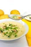 与切好的肉丸的土豆奶油色汤 免版税库存图片
