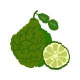 与切片平的设计的香柠檬,在白色背景隔绝的香柠檬 免版税库存照片