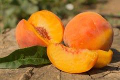 与切片的两个成熟桃子和在木背景的绿色叶子 库存照片