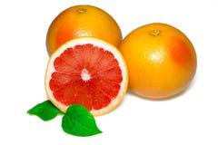 与切片的在白色背景的葡萄柚和叶子 免版税库存图片