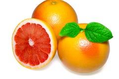 与切片的在白色背景的葡萄柚和叶子 库存照片