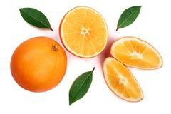 与切片的在白色背景隔绝的桔子和叶子 平的位置样式 顶视图 库存图片