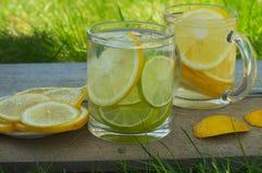 与切片的柠檬水柠檬和石灰在玻璃 免版税库存照片