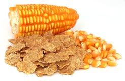 与剥落的玉米 免版税库存图片